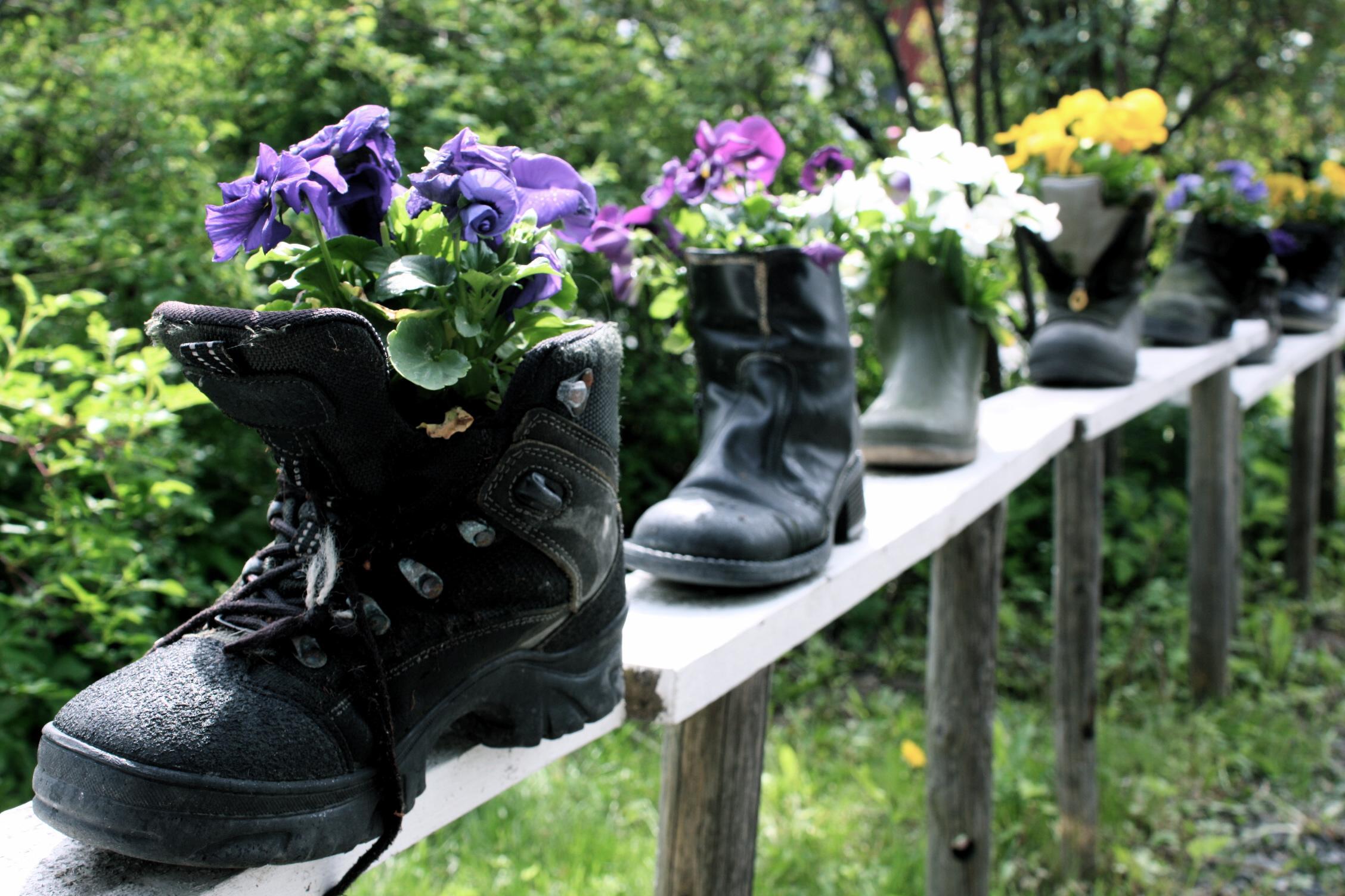 Kengät kukkimaan