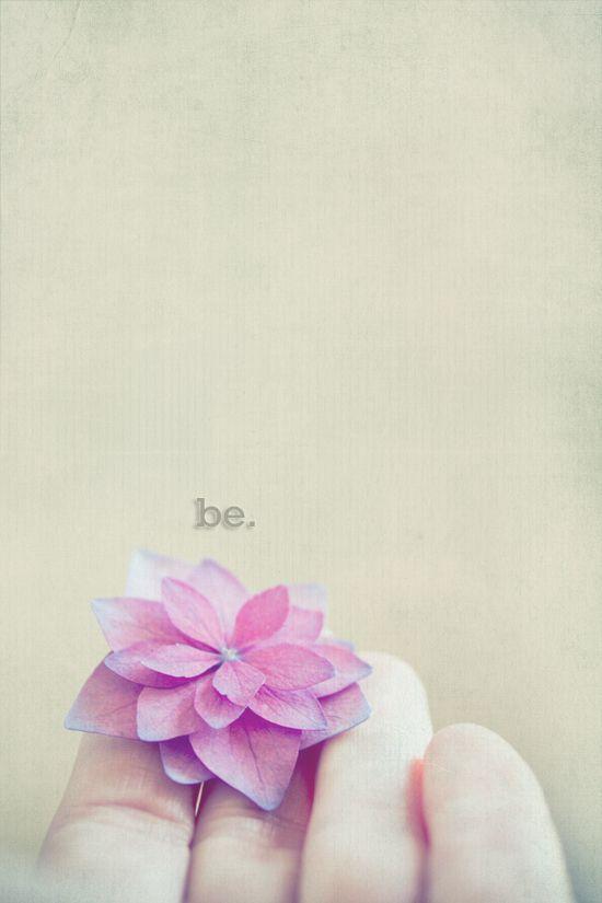 Meissä on viisautta…